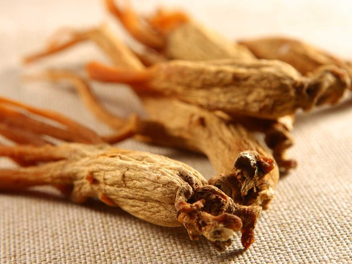 ginseng-alimenti-per-dimagrire